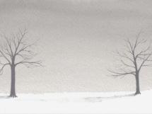 two-trees.jpg